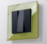 WERKEL FAVORIT Рамка на 1 пост (фисташковый, стекло) WL01-Frame-01