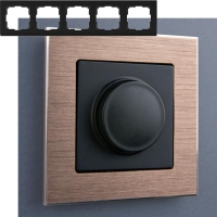 WERKEL Aluminium Рамка на 5 постов (коричневый алюминий)